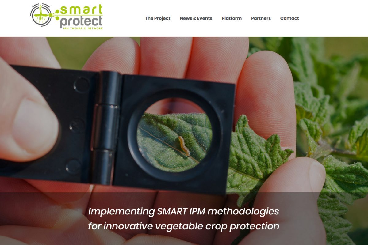 SmartProtect Website